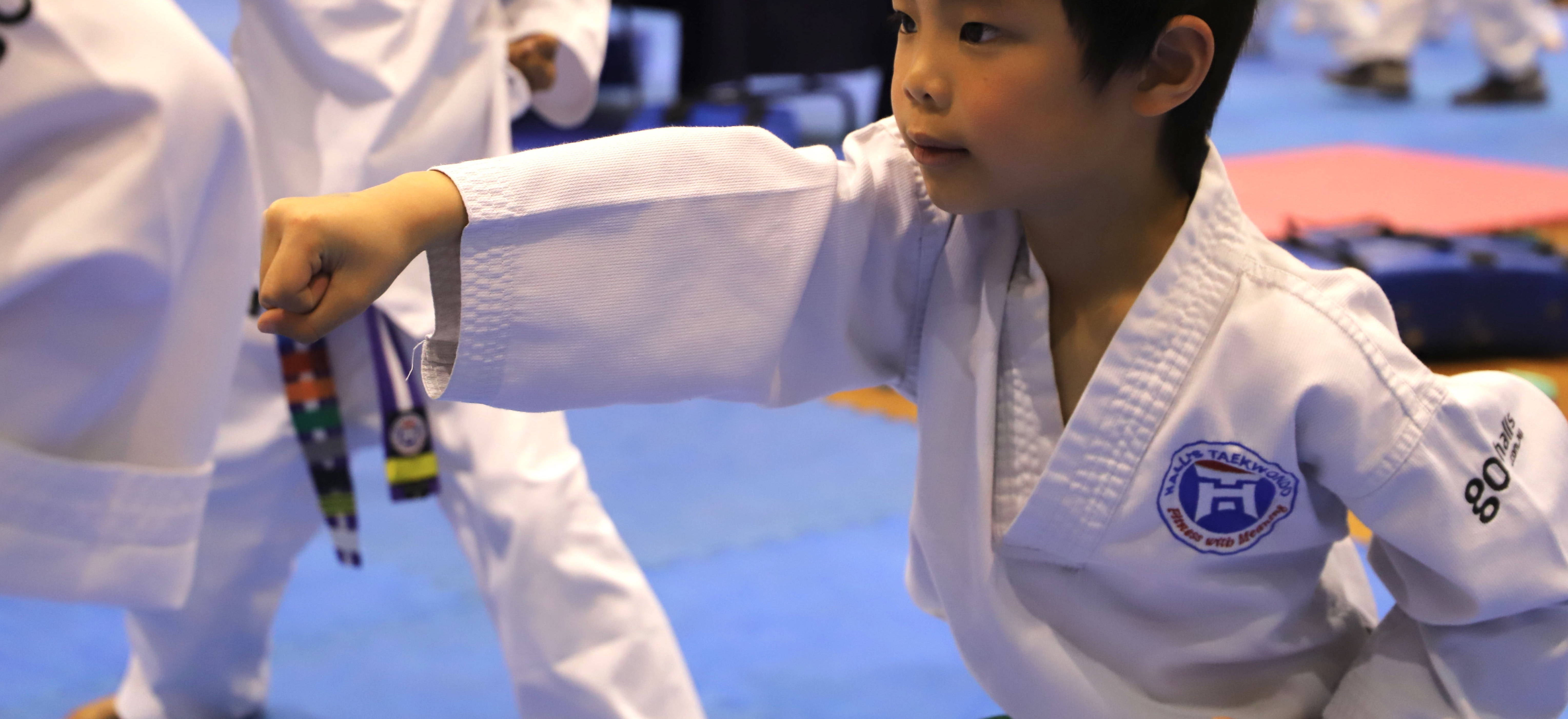 Halls Taekwondo Sept Gradings 2019 Action Little Ninjas 39 Copy